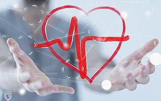 Hintertür zum Herzen