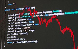 Profit through vulnerabilities