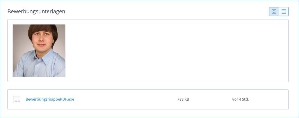 Screenshot Petya - Bewerbung