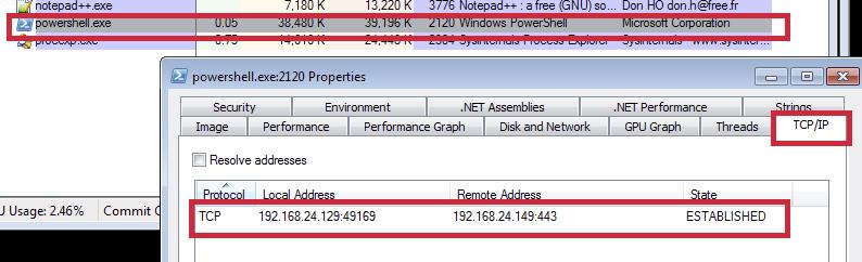 Figure 14: Established connection to dummy server
